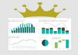 Who is the King of SharePoint BI & reporting tools?